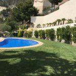 piscina arboles